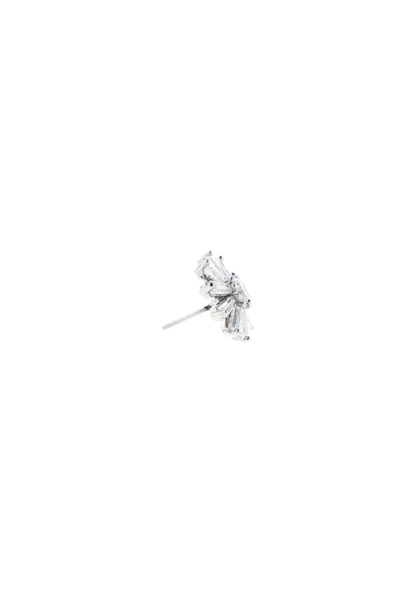 The Essential Daisy Flower
